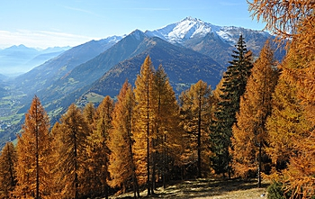 Kruidenwandeling in de herfst in zuid Tirol