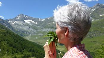 Kruidenreis in zuid Tirol met herboriste