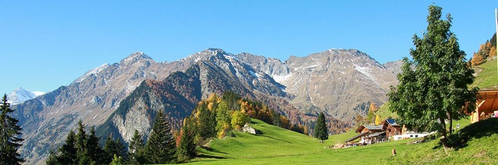 Kruiden vakantieland Zuid Tirol