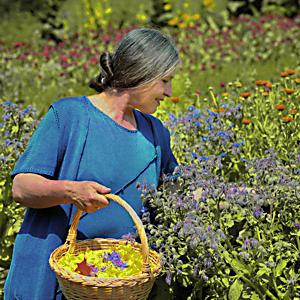 De beste kruidenvrouw in Zuidtirol
